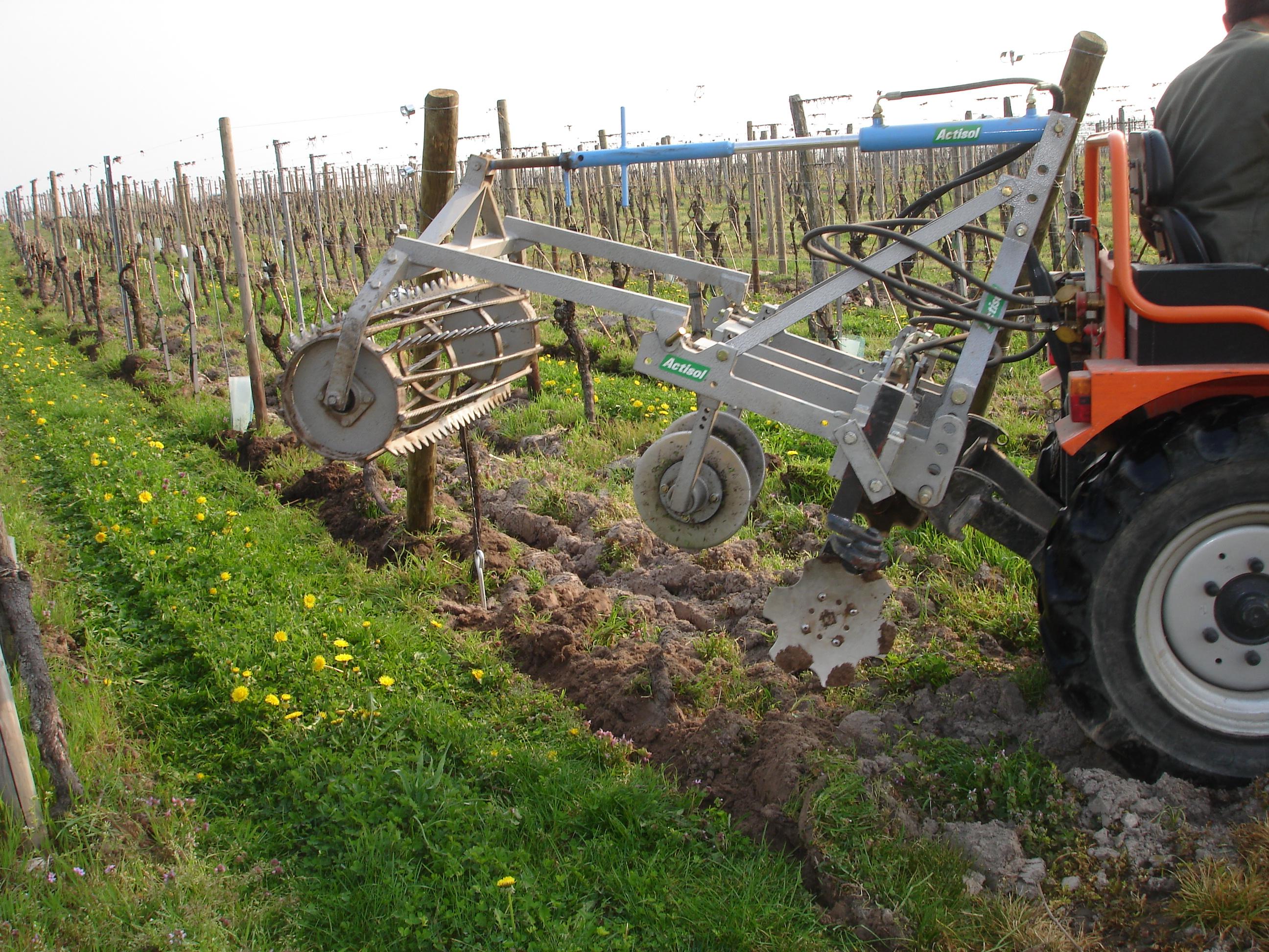 Travaux dans la vigne