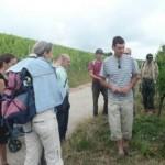 Accueil de groupes - Vins Alsace Pierre Arnold
