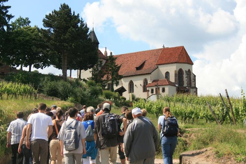 Accueil de groupes – Vins Alsace Pierre Arnold